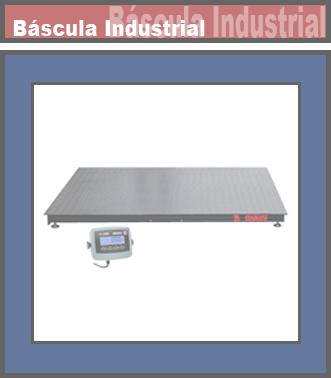 Bascula Industrial